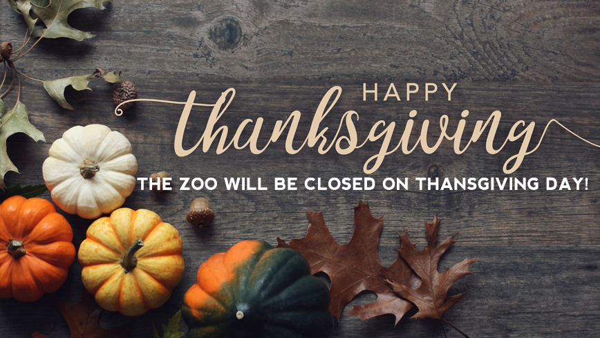 Zoo closed Thanksgiving Day