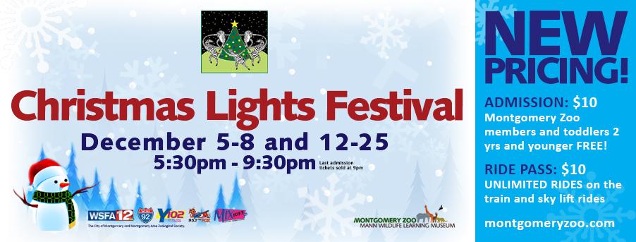 Christmas Lights Festival_event header